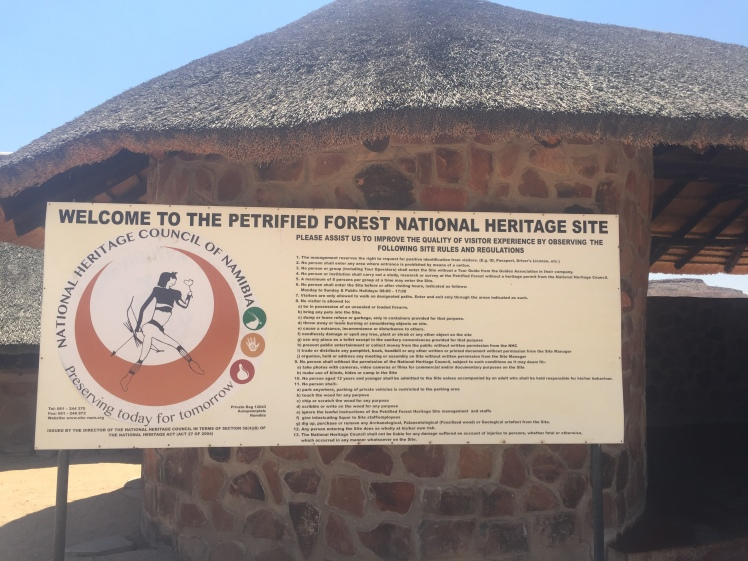 The Petrified Forest National Heritage Site in Namibia