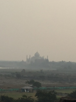 The Taj Mahal from a distance!